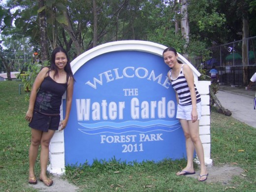WATER GARDEN, FOREST PARK, BACOLOD CITY