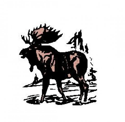 Are You A Bull Moose Progressive?