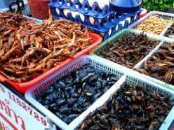 Fried Insects Can Worsen Asthma