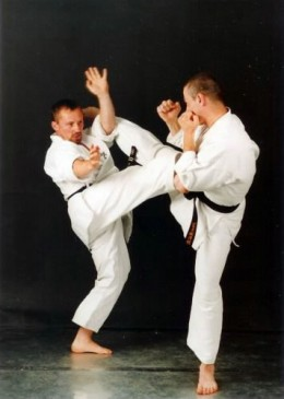 Karate is a martial art that uses weaponless techniques such as punching and kicking to overcome the opponent.
