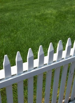 Is the Grass Really Greener on the Other Side?