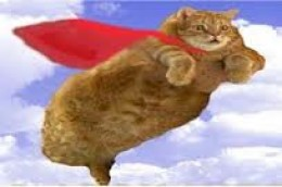 """YAY!  I AM SUPER KITTY!  READY TO SAVE THE PLANET FROM EVIL!"""