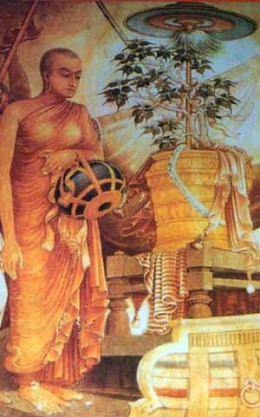 The birth, the growth and the death of a bodhi tree, according to Buddhist mythology and folklore, is steeped in mystery and magic