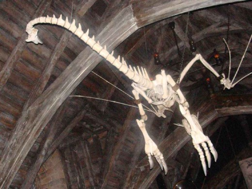 In the ceiling of the main chamber is a skeleton of a dragon.