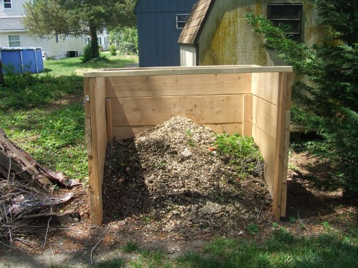 Compost will be added before bush bean seeds are introduced into the soil.