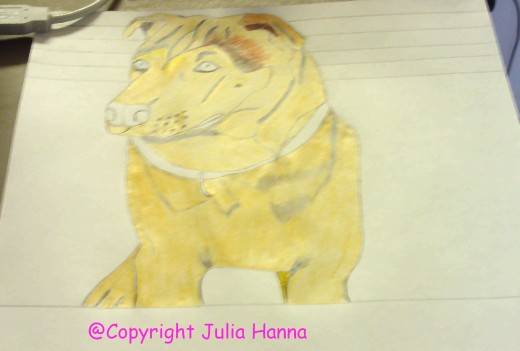 Here I finished coloring in Buster with the tan colored pencil, and began to shade in his darker patches of fur.