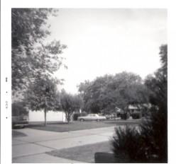 My neighborhood growing up.