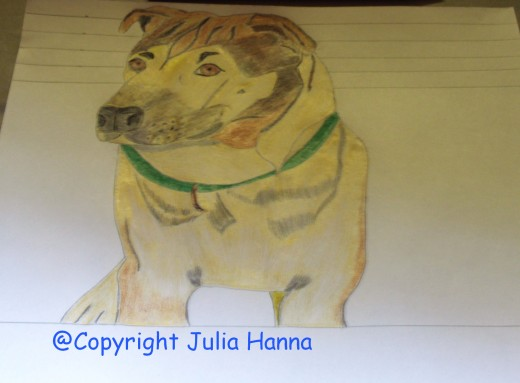 Once Buster was completlycolored in, I added the green color to his collar.
