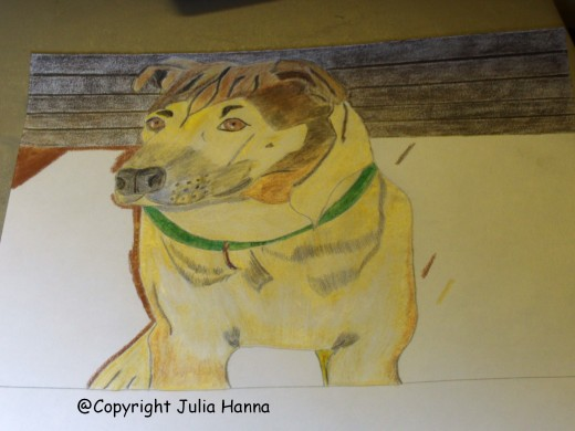 I colored the background behind Buster with a chocolate brown shade of colored pencil.