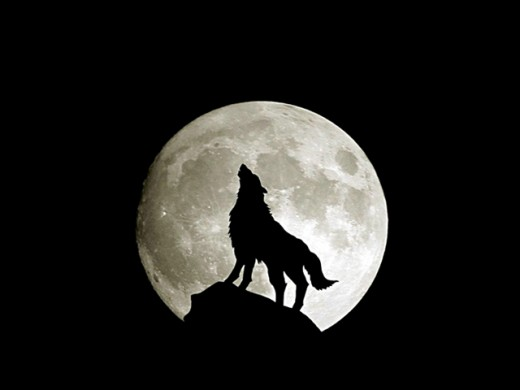 """And smiggitingly howl at the moon..."""