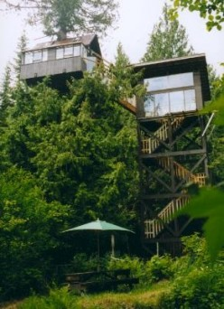 Treehouse Bed & Breakfasts, Hotels, and Resorts