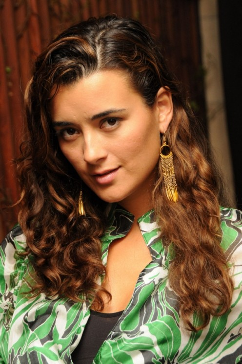 NCIS actress Cote de Pablo plays an Israeli on the show but is actually Chilean.