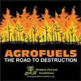 Bio fuels are an offside contributor to food deserts. The food such as corn that can be eaten, is instead diverted and turned into bio fuel.