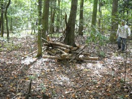 Homemade ground blind made from fallen timbers, located just 30 yds from a nearby swamp.