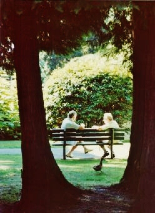 These people were resting on one of the many benches in Beacon Hill Park.
