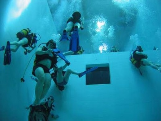 Divers enjoying themselves under the water