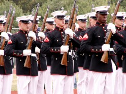 Discipline, Pride, Integrity - Corps values