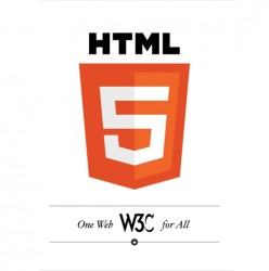 Is it time for us to learn HTML 5 yet despite issues with Internet Explorer?