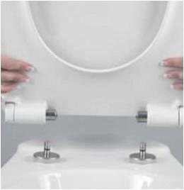 Take Off toilet Seat Hinges