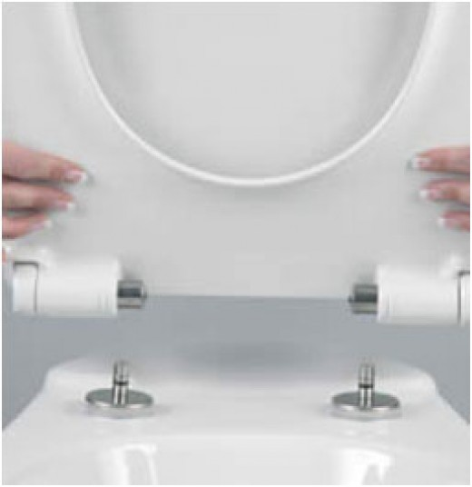 Take Off toilet Seat Hinges