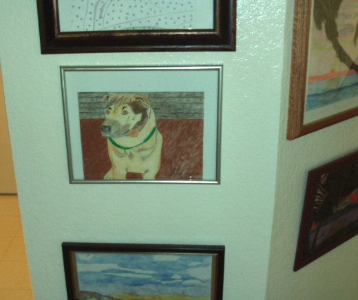 The framed picture of Buster is a sentimental way to commemorate a dearly departed pet.