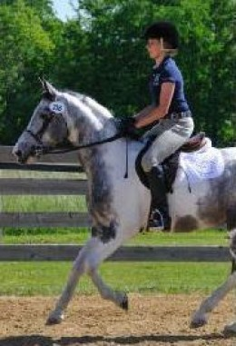 Easy! From home to basic horse show with no additional cost for clothing.