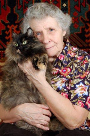 Is this how you want to end up? A crazy old cat lady?  What signals do you put off to possible husband material?