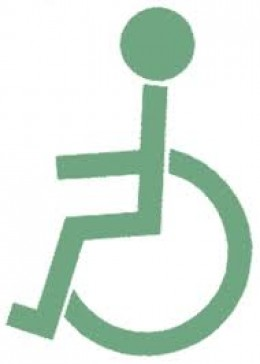 Causes of Physical Disabilities