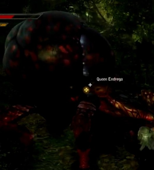 Witcher 2 Slaying the Queen Endrega in the Endregas Contract