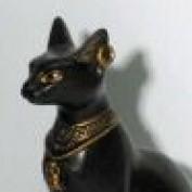 sanura2011 profile image