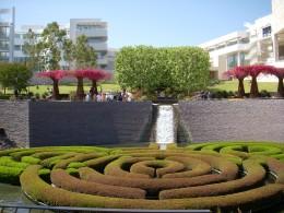 Garden, Flowering Maze
