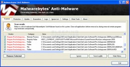 Step 10. Malwarebytes example of results page.