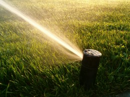 Watering a lawn or garden efficiently will save money, and encourage proper growth.