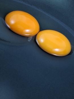 Egg yolks are rich in vitamins, folic acid, and lecithin.