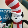Top 5 Dr Seuss Books for Children