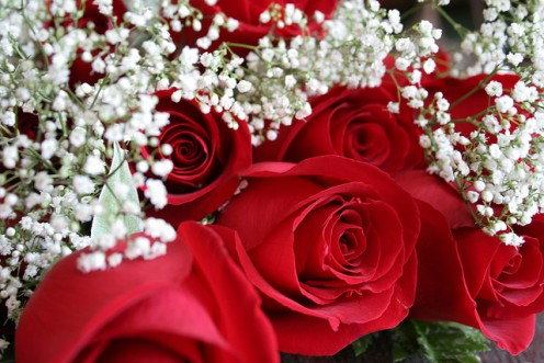 Red roses always bespeak of love, but are they the most creative anniversary gift idea? Read on for some inspiration. CCL D