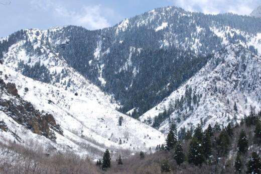 Neff's Canyon