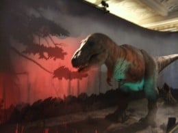 The fantastic T-Rex exhibition