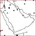 Cheetah in the United Arab Emirates