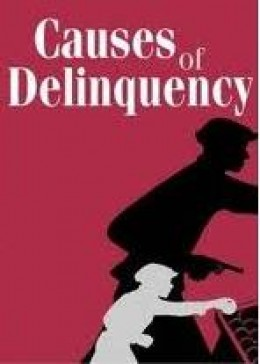 juvenile delinquency causes and control hubpages