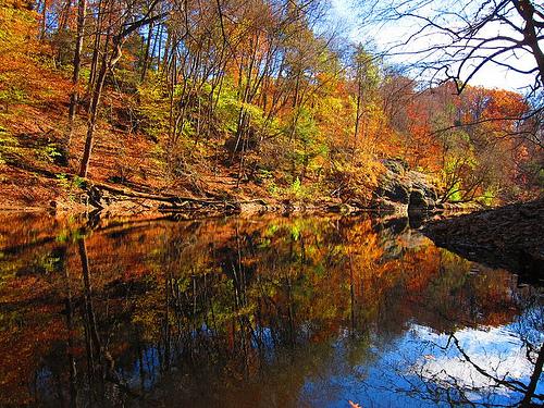 Beautiful Wissahickon Creek