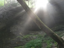 God's Mysterious Ways: A Light Beyond These Woods