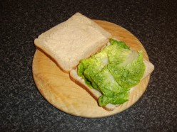 The lettuce is made to form a bed for the chicken and beansprouts