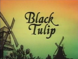 "Title screen for Burbank Films Australia's 1988 film ""Black Tulip."" Restored and enhanced."