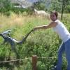 mistyblue101 profile image