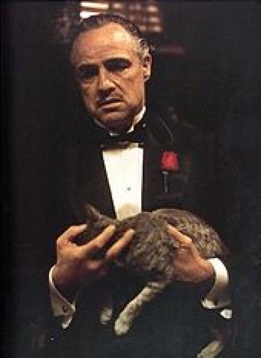 I wanna make you and offer you can't refuse!""
