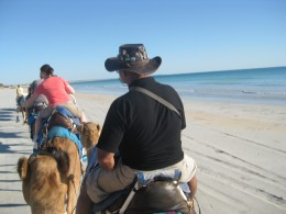 Camel riding along the nudist beach section of Cable Beach!