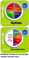 What is the Best Nutrition Guide - Food Pyramid or Plate