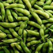 Lots of Soya bean