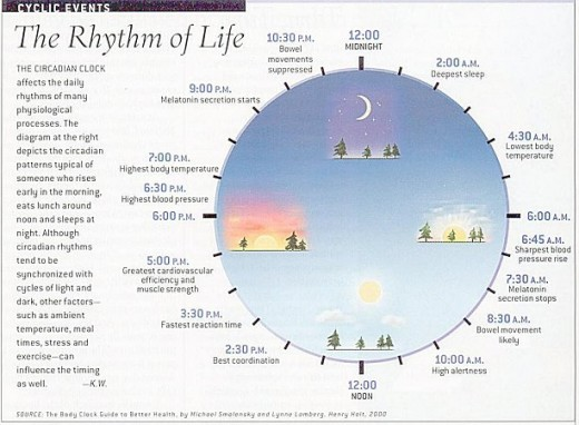 Circadian rhythms effect all of us, but many behave as if the only one effected is themselves.